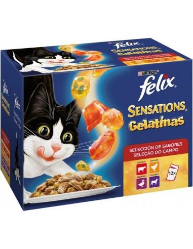 Purina Felix Sensations Adult Mix Selecció de Carns 12 x 100 gr 7613035093973